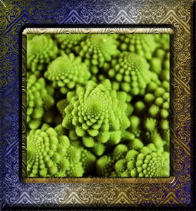 Chou Romanesco